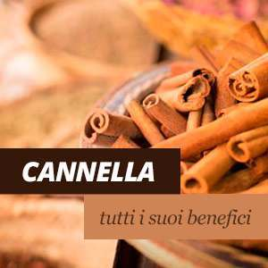 Cannella - Benefici e Proprietà
