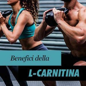 L-Carnitina Benefici e Proprietà