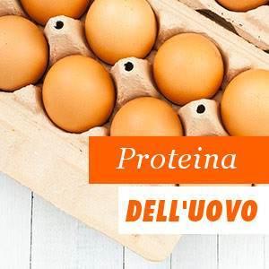 Proteínas de Huevo Beneficios y Propiedades