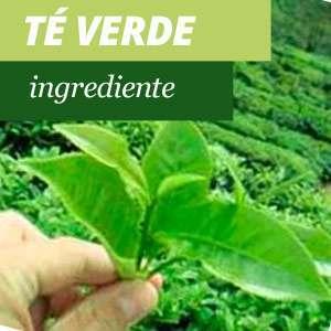 Tutto sul tè verde