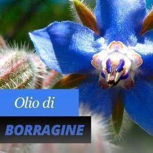 Olio di Borragine, Benefici e Proprietà
