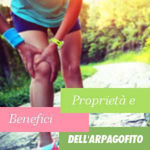 Proprietà e Benefici dell'Arpagofito