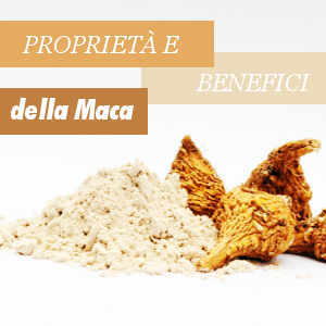 Maca Andina Benefici e Proprietà