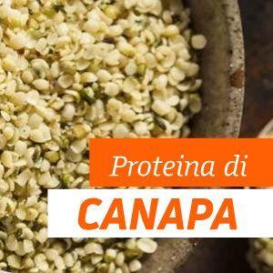 Proteine di Canapa: Benefici e Proprietà