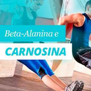 Beta Alanina e Carnosina