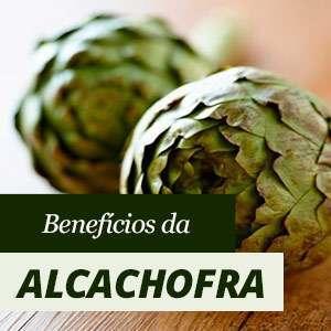 Tudo sobre a Alcachofra