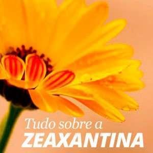 Tudo sobre a zeaxantina