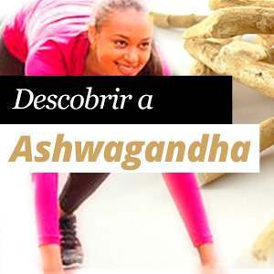 Ashwagandha: Propiedades e Beneficios