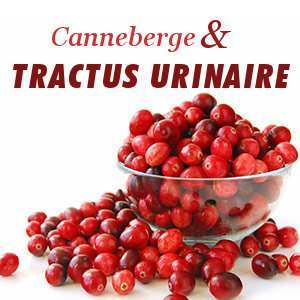 Canneberge et infections d'urine