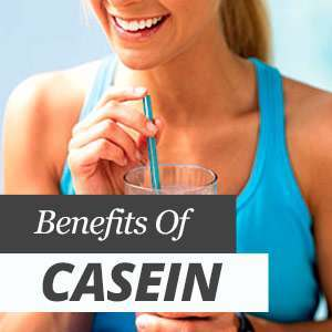 Everything about casein