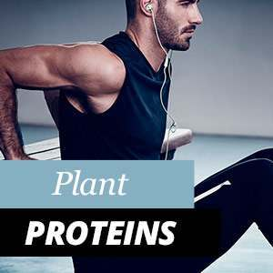 Vegetable Proteins - Benefits and Properties