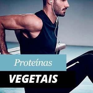 Proteínas Vegetales - Benefícios e Propriedades