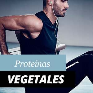 Vegetable Proteins – Benefits and Properties
