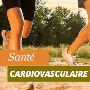 Tout sur la santé cardiovasculaire