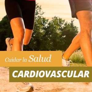 Salud Cardiovascular Beneficios y Propiedades