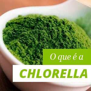 Chlorella Beneficios y Propiedades