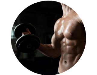 ayuda a ganar masa muscular