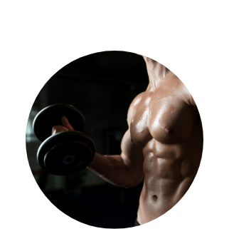 help in gaining muscle mass