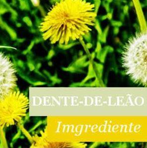Ingrediente Dente-de-Leão