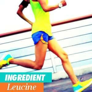 Leucine Benefits and Properties