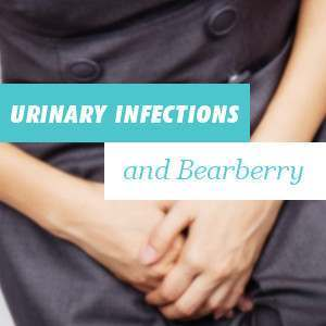 Urinary infections and Bearberry