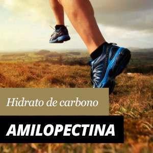 Amilopectina - Beneficios y Propiedades