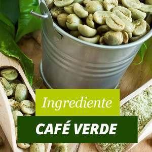 Café Verde Beneficios y Propiedades