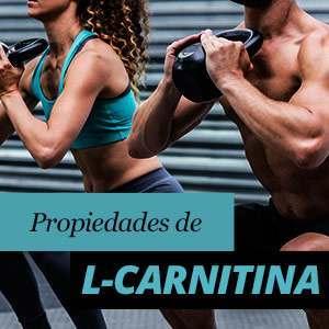 Todo sobre l-carnitina