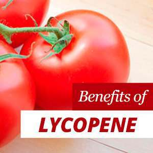 Everything about Lycopene
