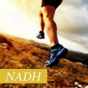 NADH Beneficios y Propiedades
