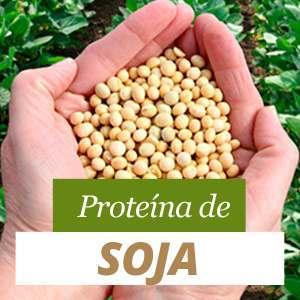 Proteína de Soja Beneficios y Propiedades
