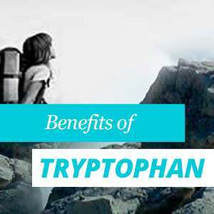 Tryptophan Benefits