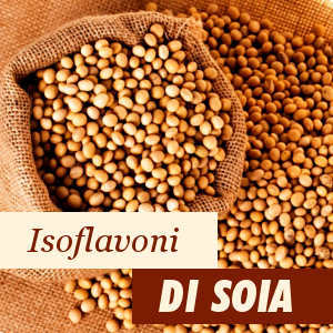 Ingrediente Isoflavoni di Soia