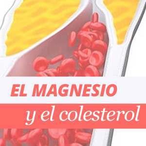Magnesio y Colesterol