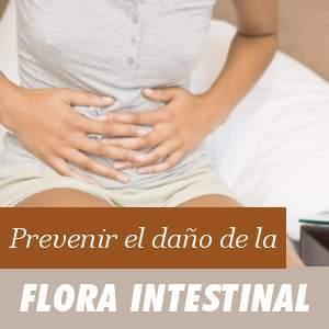 La flora intestinal