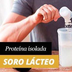 Whey Protein Isolate ou Isolado de Proteína de Soro