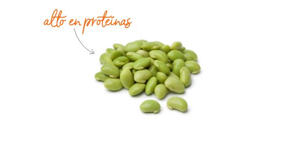 Soja- alta en proteínas